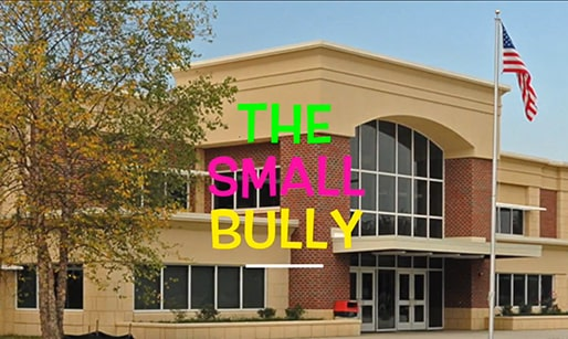 the small bully student video